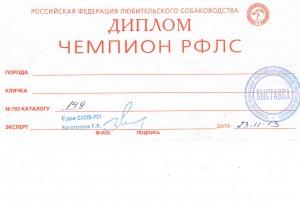 Чемпион РФЛС